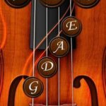 奈良・東大阪の楽しいバイオリン教室 りり先生のレッスンアイテム